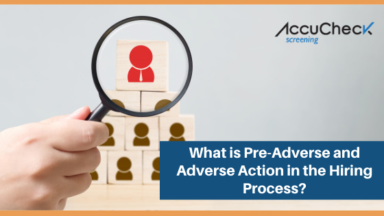 What is Pre-Adverse and Adverse Action in the Hiring Process?